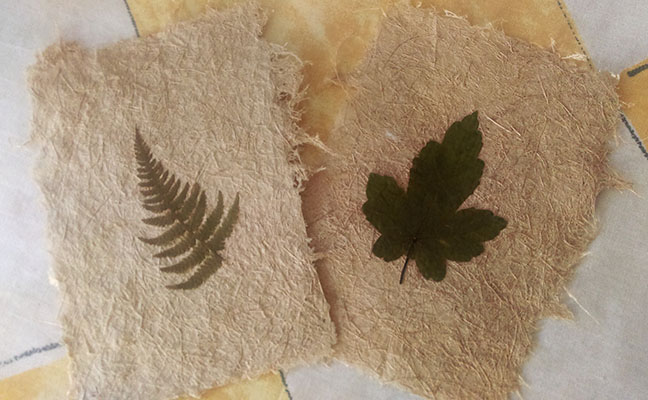 Paper Making with Bryan Collis